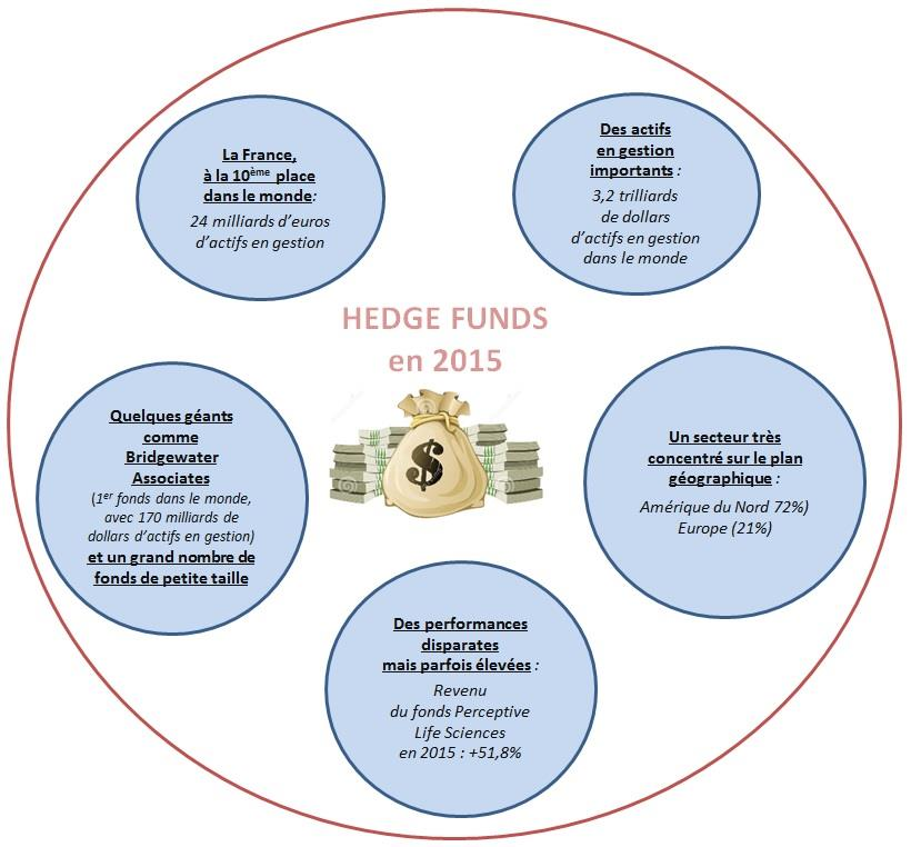 Visuel du schémas hedge funds en 2015
